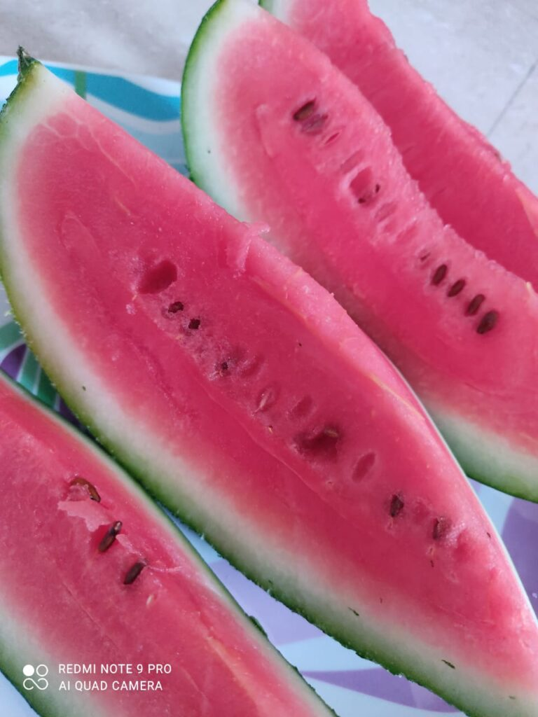 Top 13 Surprising Health Benefits of Eating Watermelon in Summer