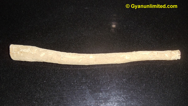 Miswak prevents plaque and gingivitis