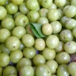 Top 10 Medicinal and Health Benefits of Amla or Indian Gooseberry