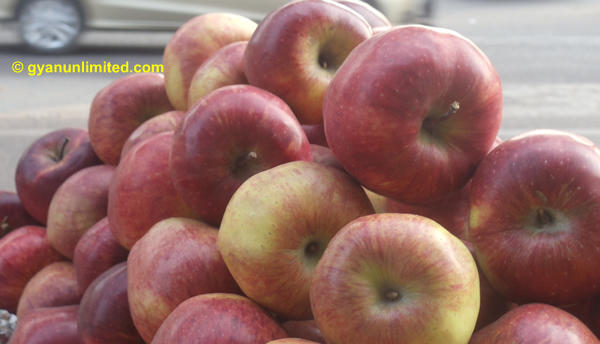 apple-for-heart
