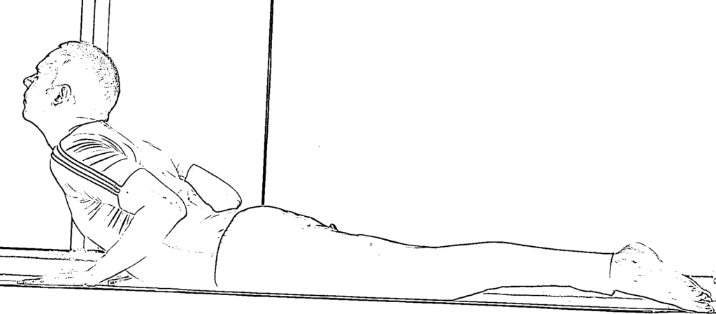 Learn How To Do Bhujangasana Step By Step: Cobra Pose Benefits and Precautions